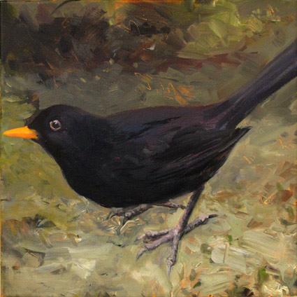 oil painting of Blackbird by Eoin Mac Lochlainn
