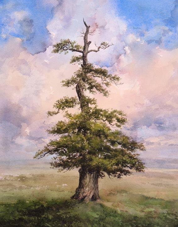 watercolour of old tree by Eoin Mac Lochlainn Deireadh Fómhair series